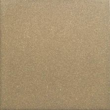 Daltile Suretread And Pavers Golden Brown Paver (Smooth Surface) 0Q78661PB
