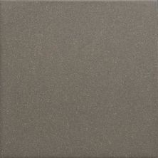 Daltile Suretread And Pavers Storm Gray Paver (smooth Surface) Gray/Black 0Q83661PB