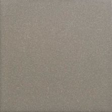 Daltile Suretread And Pavers Gray Paver (smooth Surface) Gray/Black 0Q85661PB