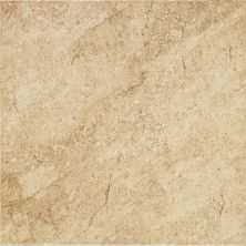 Daltile Cannes Noce Beige/Taupe CA2118181PV