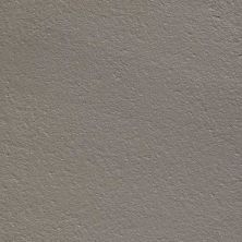 Daltile Ever Earth Textured EV0524241T