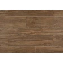 Daltile Forest Park Timberland FP976361PF