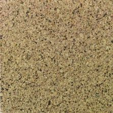 Daltile Granite Collection Golden Leaf Gold/Yellow G293SLAB11/41L