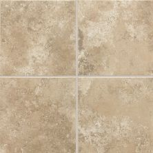 Daltile Stratford Place Willow Branch SD921818AP2