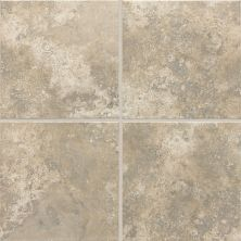 Daltile Stratford Place Dorian Grey SD9412121P2