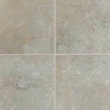 Daltile Sandalo Castillian Gray SW9222MS1P2
