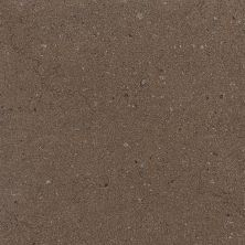 Daltile Torreon Cacao Brown TN9712241P6