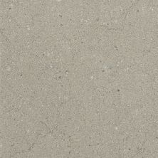 Daltile Torreon Brino Gray/Black TN9812241P6