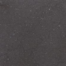 Daltile Torreon Coal TN9912121P6