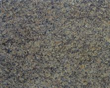 Daltile Granite  Natural Stone Slab Giallo Portofino Gold G207SLAB11/41L