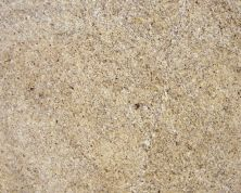 Daltile Granite Collection New Venetian Gold Gold/Yellow G215SLAB3/41L