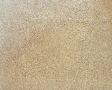 Daltile Granite Collection Golden Garnet Gold/Yellow G254SLAB3/41L