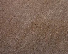 Daltile Granite  Natural Stone Slab Giallo Antico Beige/Taupe G269SLAB3/41L