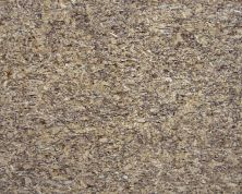 Daltile Granite Collection Santa Cecilia G287SLAB11/41L