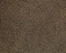 Daltile Granite  Natural Stone Slab Tropical Brown G294SLAB3/41L