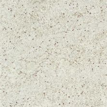 Daltile Granite Collection Kashmir White White/Cream G296SLAB11/41L