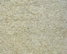 Daltile Granite Collection Giallo Ornamental Beige/Taupe G331SLAB11/41L