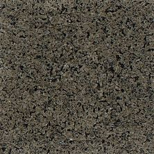 Daltile Granite Collection Spring Green G364SLAB3/41L