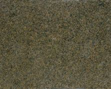 Daltile Granite  Natural Stone Slab Giallo Vicenza Gold G426SLAB11/41L