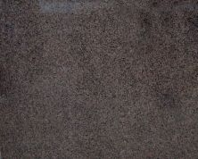 Daltile Granite Collection Desert Brown G518SLAB3/41L