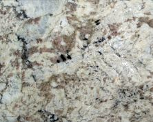 Daltile Granite  Natural Stone Slab White Spring G539SLAB11/41L