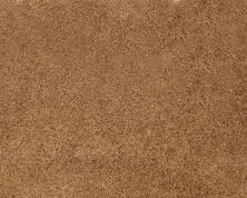 Daltile Granite  Natural Stone Slab Autumn Harmony Gold G555SLAB11/41L