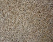 Daltile Granite  Natural Stone Slab Autumn Leaf Brown G570SLAB3/41L