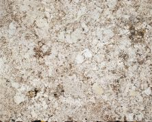 Daltile Granite  Natural Stone Slab Delicatos White G593SLAB3/41L