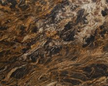 Daltile Granite Collection Golden Thunder Brown G665SLAB11/41L