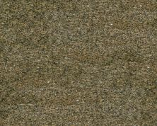 Daltile Granite  Natural Stone Slab Amarello Boreal Gold G815SLAB11/41L