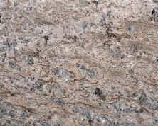 Daltile Granite  Natural Stone Slab Enchanted Forest Gray/Black G930SLAB3/41L