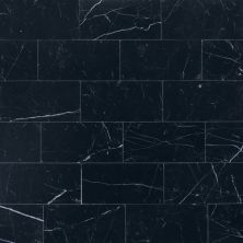Daltile Marble Collection Nouveau Nero (Polished and Honed) M312361L