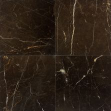Daltile Marble Collection St. Laurent Oriental (polished) Gray/Black M40812121L