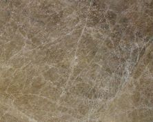 Daltile Marble Collection Emperador Lig Beige/Taupe M417SLAB11/41L