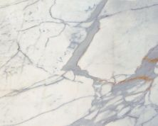 Daltile Marble Collection Calacatta Gold (polished And Honed) White/Cream M457SLAB11/41U