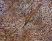 Daltile Marble Collection Rainforest Brown (polished) Brown M544SLAB11/41L