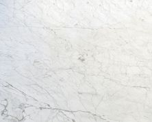 Daltile Marble Collection Carrara Gioia (polished) White/Cream M702SLAB3/41L