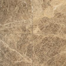 Daltile Marble Collection Emperador Light Classic (Polished) M712SLAB11/41L