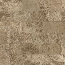 Daltile Marble Collection Emperador Light Classic (polished And Honed) Brown M712361L