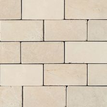 Daltile Marble Collection Crema Marfil Classico (tumbled) White/Cream M72236TS1P