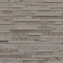Daltile Marble Collection Silver Screen (3/8″ Random Polished, Honed, and Split Face) M74438RANDMS1P
