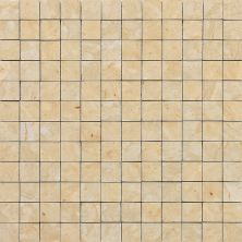 Daltile Marble Collection Champagne Gold (Honed) M76011MS1U