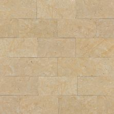 Daltile Marble Collection Champagne Gold (polished And Honed) Gold/Yellow M760361L