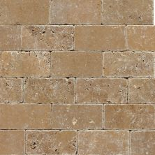 Daltile Travertine Collection Noce (Tumbled) T31136TS1P