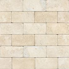 Daltile Travertine Collection Baja Cream (tumbled) Beige/Taupe T72036TS1P