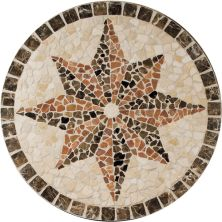 Daltile Medallion Collection Northern Star TSM432RNDMED1P