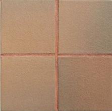 Daltile Quarry Textures Adobe Flash (2) 0T06661P