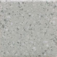 Daltile Keystones Desert Gray  Speckle (1) Gray/Black D20022MS1P
