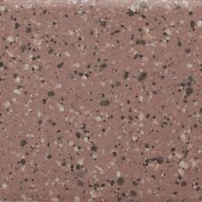 Daltile Keystones Fire Brick Speckle (3) D20322MS1P