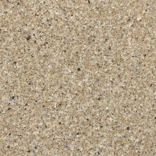 Daltile Geo Flecks Pebble Beach NQ1446CHIPTHU